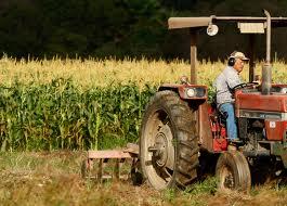 Avenir de l'agriculture