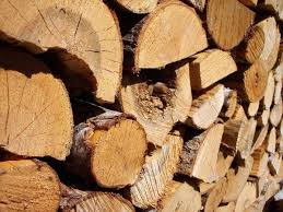 Filière bois