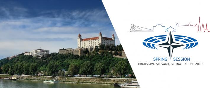 Philippe FOLLIOT participe à la session de printemps de l'Assemblée parlementaire de l'OTAN à Bratislava