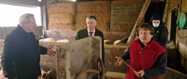 Visite au Bez de la famille Viguier, éleveurs de cochons sur paille